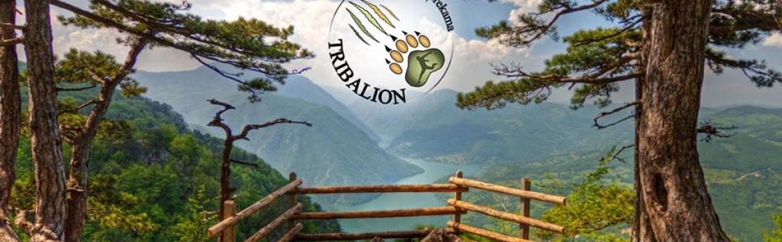 INTERVJU SA ORGANIZATORIMA TRIBALION-A