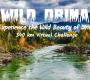 Wild Drina