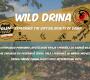 Wild Drina Virtual Challenge